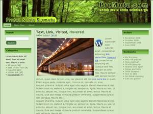 Jual Theme Wordpress Murah